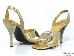 Zapatos ROGER VIVIER