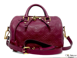 Bolso LOUIS VUITTON Speedy 25