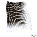 Foulard MAX-MARA 200 x 150 cm